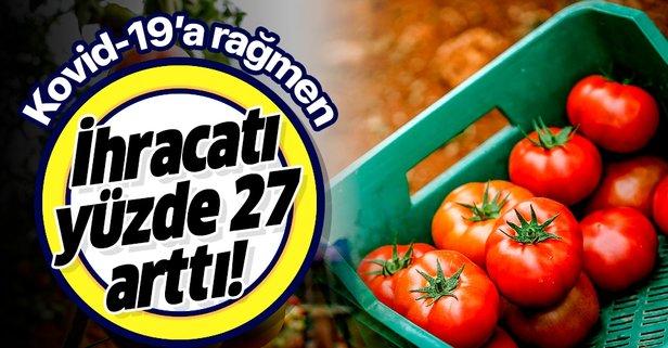 O ilde yaş sebze meyve ihracatı yüzde 27 arttı