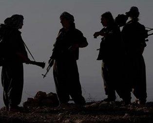 Teslim olan teröristler anlattı: Örgüt içinde infazlar başladı