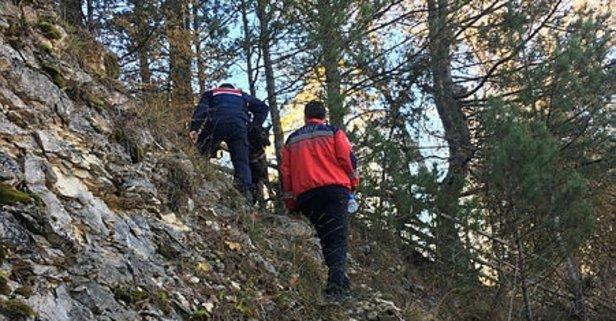 Ormanlık alanda ceset parçaları bulundu