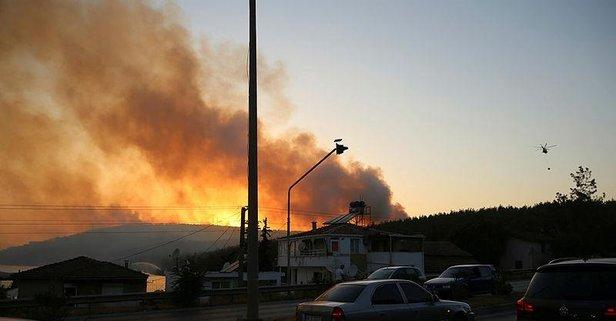 Milas'taki orman yangını kontrol altına alındı!