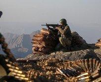 PKK'ya üst düzey darbe! O isim öldürüldü