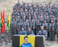 Teslim olan teröristler HDP'yi işaret ediyor