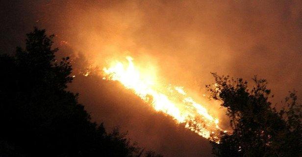 MSB Denizli'deki yangın için harekete geçti