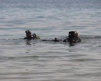 Van Gölü'nde görüntülendi! 30-40 metre uzunluğunda