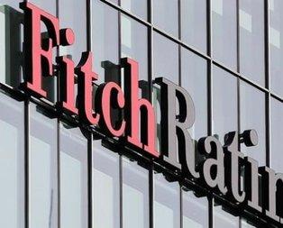 Fitch'e Türkiye isyanı
