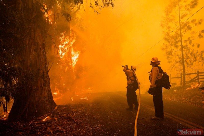 California'da orman yangınları kontrol altına alınamıyor