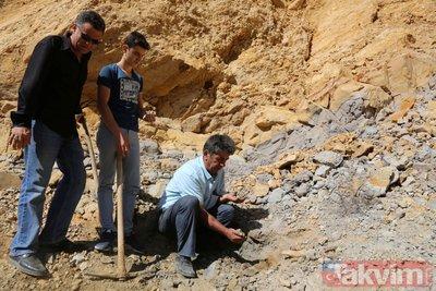 Köylülerin yıllardır yaktığı madde doğal kehribar çıktı