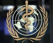 DSÖ küresel sağlık sorunları için vakıf kurdu