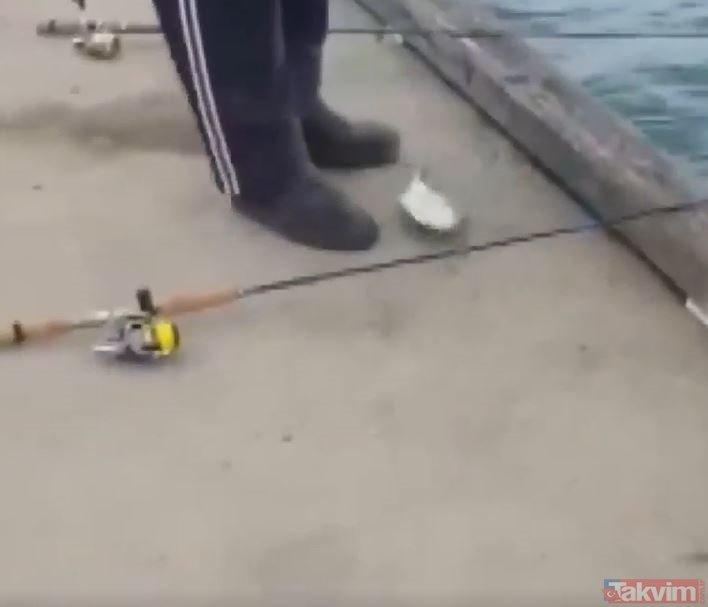 Olta ile yakaladığı balığın içinden bakın ne çıktı! Görenler gözlerine inanamadı