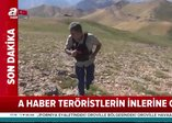 Terör örgütü PKK'ya Kıran darbesi! İnlerine girildi