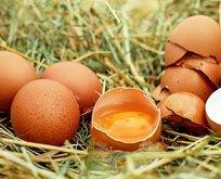 Kalbin için yumurta kır