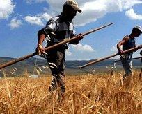 Tarım ve Orman Bakanlığından çiftçiye müjde