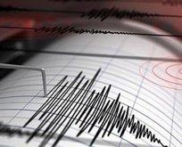 Van'da korkutan deprem!