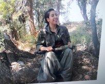 Diyarbakır Barosuna kayıtlı avukat PKK'ya hizmet etmiş!