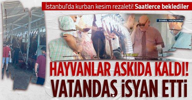 İstanbul'da kurbanlıklar askıda kaldı
