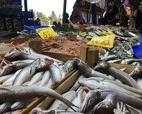 Gıda teröristleri balıkta bile hile yapıyor!