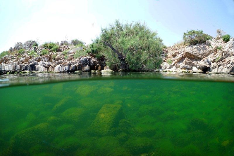 Bafa Gölünün su altı zenginliği kayda alındı
