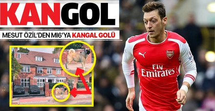 Mesut Özil evini kangal köpekleriyle koruyor