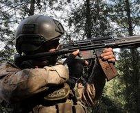 Amanos Dağları'nda bir terörist etkisiz hale getirildi