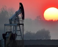 ABD petrol stokları 584,000 varil yükseldi