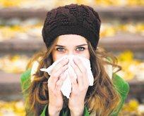 Ekinezya-ıhlamur gripten korunun