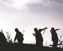 Teröristler kirli işbirliğini itiraf etti