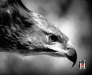 Beşiktaş'tan heyecanlandıran 19.03 paylaşımı!