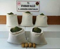 Diyarbakır'da yüzlerce kilo zehir ele geçirildi!