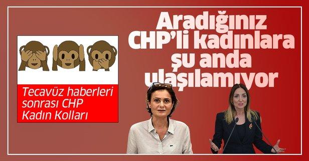 CHP Kadın Kolları 3 maymunu oynuyor