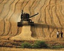 Çiftçilere destek ödemesi: 20 Mart'ta başlıyor