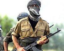 PKK'lı teröristler okul müdürünü kaçırmak istedi!