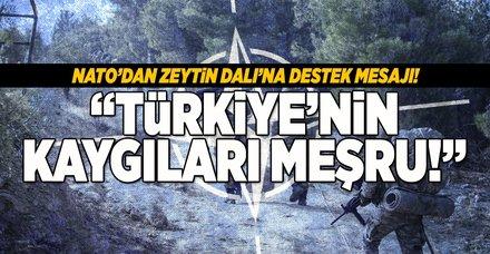 NATO'dan Afrin açıklaması