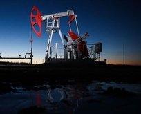 Brent petrol fiyatlarında aşağı yönlü hareketlilik