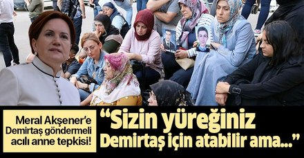 """Akşener'e Demirtaş göndermeli acılı anne tepkisi: """"Sizin yüreğiniz Selahattin Demirtaş için atabilir ama..."""""""