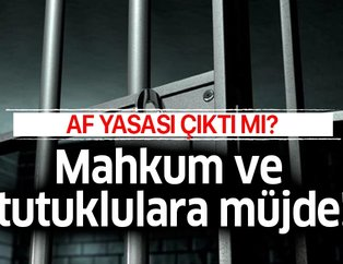 Son dakika yargı reformu paketi onaylandı mı? Ceza infaz yasası son durum nedir? Af yasası son dakika haberi