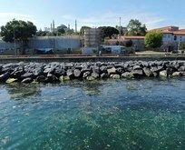 İstanbul Boğazı'nda yüzen çöp yığınları!