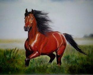 Rüyada kırmızı at görmek ne anlama gelir?