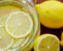 Her şey 2 bin 500 yıl önce başladı! Bir kaç damla limon...