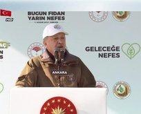 Başkan Erdoğan'dan sözde çevrecilere sert tepki