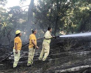 Muğla'daki orman yangınlarıyla ilgili açıklama