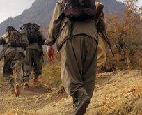 Viyan kod adlı teröristten PKK itirafları