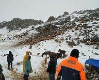 Mahsur kalan çobanlar ve 2 bin hayvan kurtarıldı