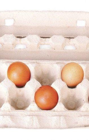 Bu resimde ilk ne görüyorsun? (Kişilik testi)