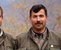 PKK'nın Suriye sorumlusu öldürüldü...