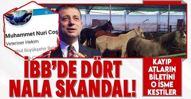 İBB'nin kayıp at skandalında flaş gelişme!