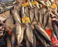 Balık satın alırken dikkat! Palamutta büyük hile