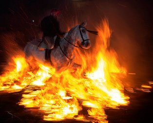 Atlar ateş üstünde yürütüldü! İşte sebebi