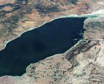 Dünyada sadece Burdur Gölü'nde bulunuyor!