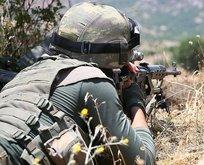 Bingöl'de PKK'ya darbe! Listeye iki çizik daha