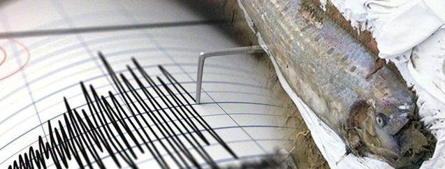 Büyük depremin habercisi! Yine kıyıya vurdu